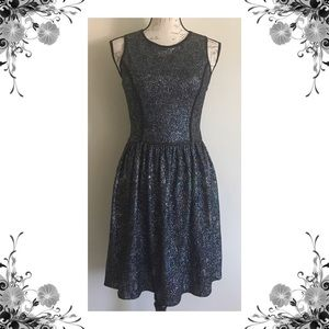 {Love Ady} NWOT Metallic Fit N' Flare Mini Dress